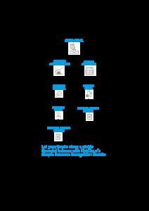 Revenue Recognition Diagram